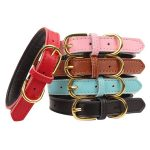 Aolove Basic Classic Padded Leather Cat Collar