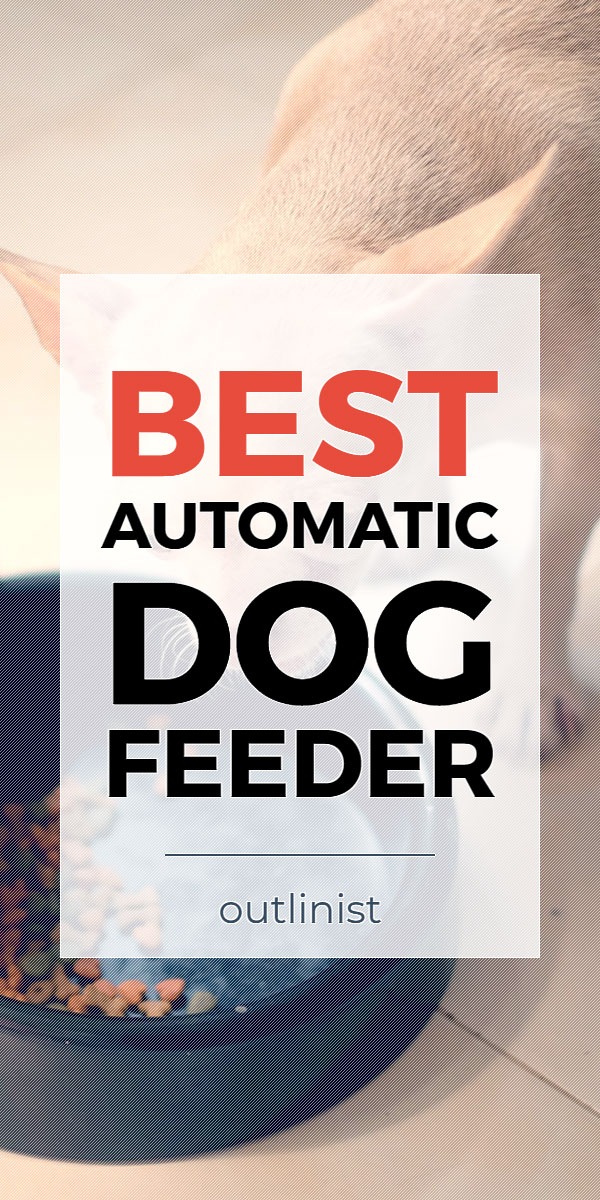 Best Automatic Dog Feeder • Reviews & Buying Guide