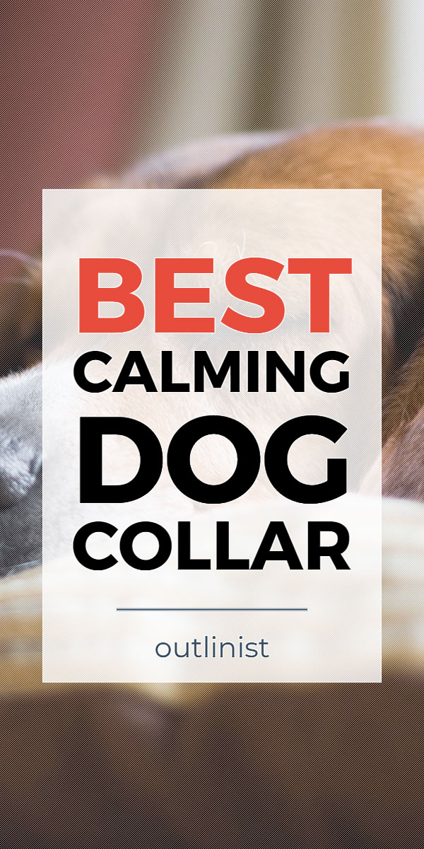 Best Calming Dog Collar • Reviews & Buying Guide
