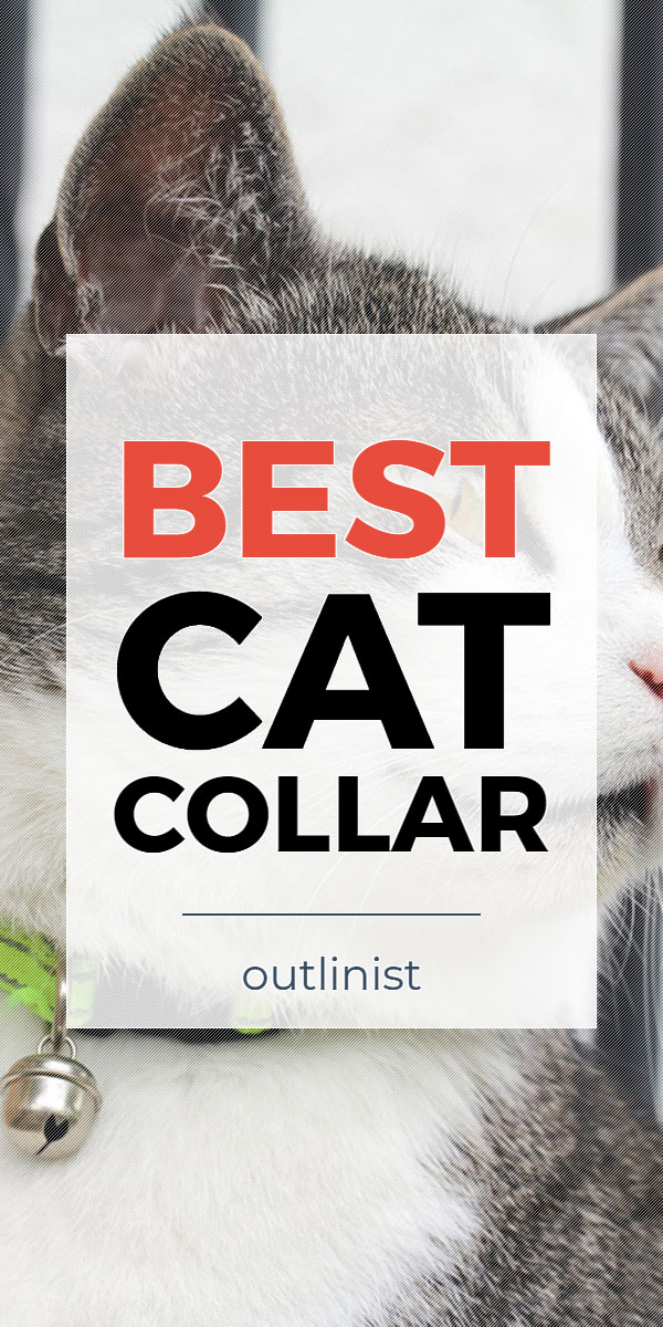Best Cat Collar - Reviews & Buying Guide