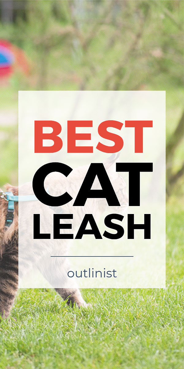 Best Cat Leash - Reviews & Buying Guide