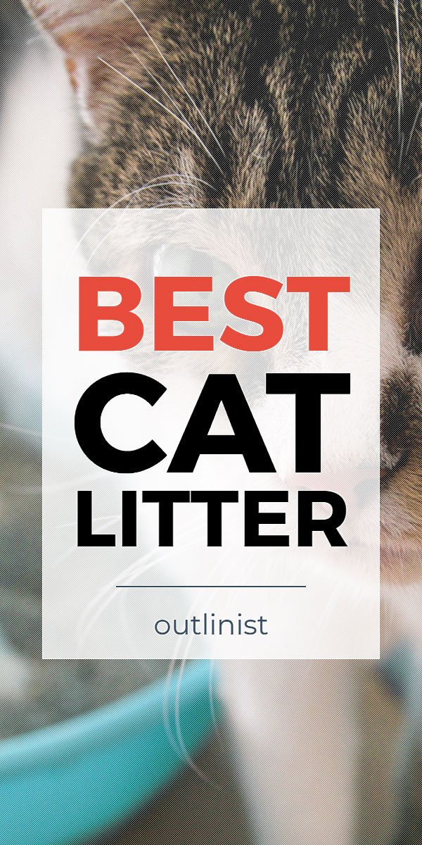 Best Cat Litter - Reviews & Buying Guide