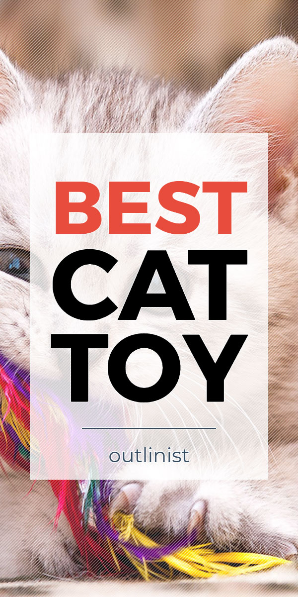 Best Cat Toy - Reviews & Buying Guide