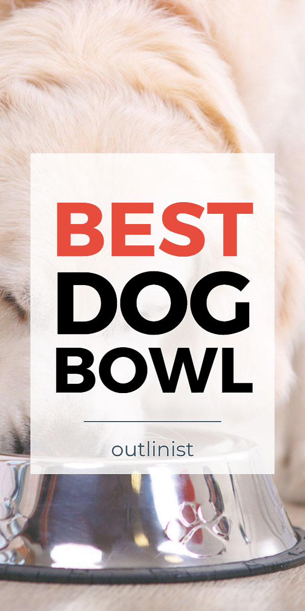Best Dog Bowl • Reviews & Buying Guide
