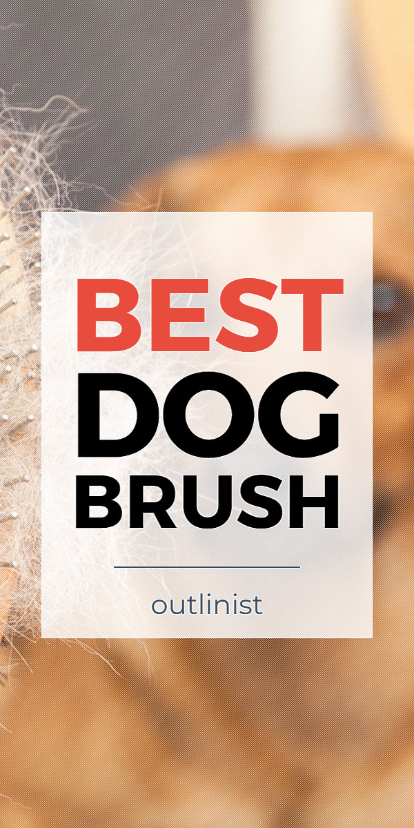 Best Dog Brush • Reviews & Buying Guide