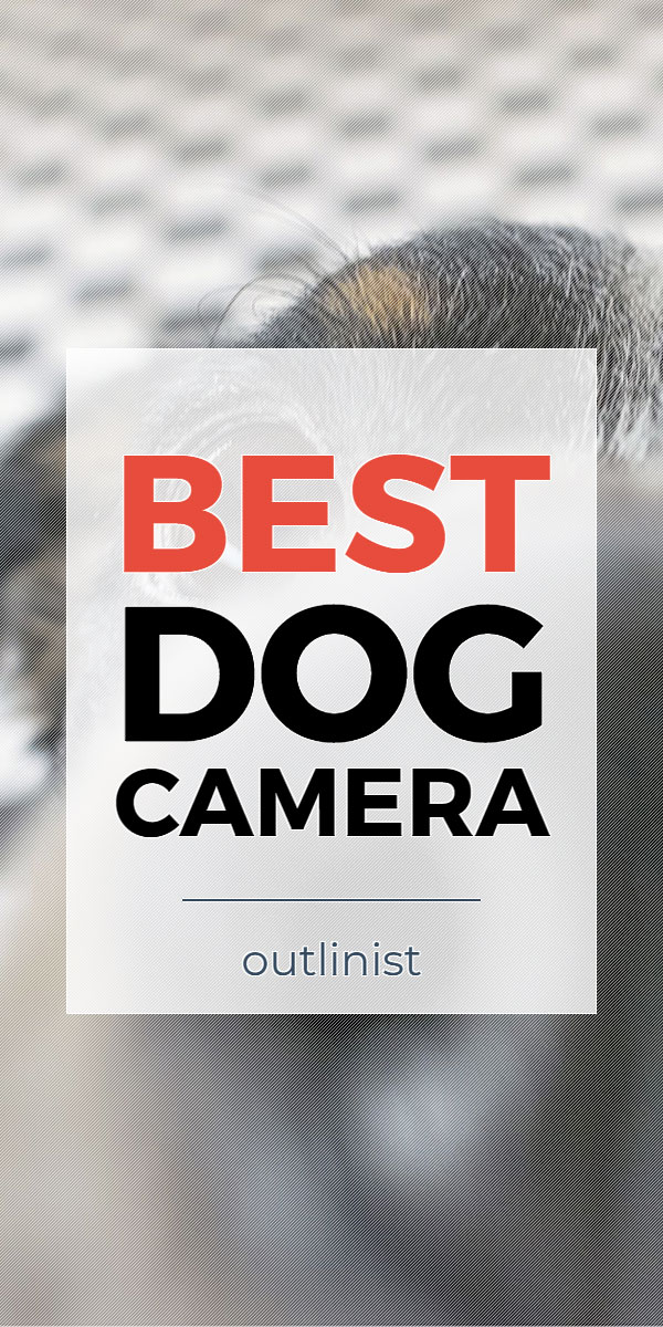 Best Dog Camera • Reviews & Buying Guide