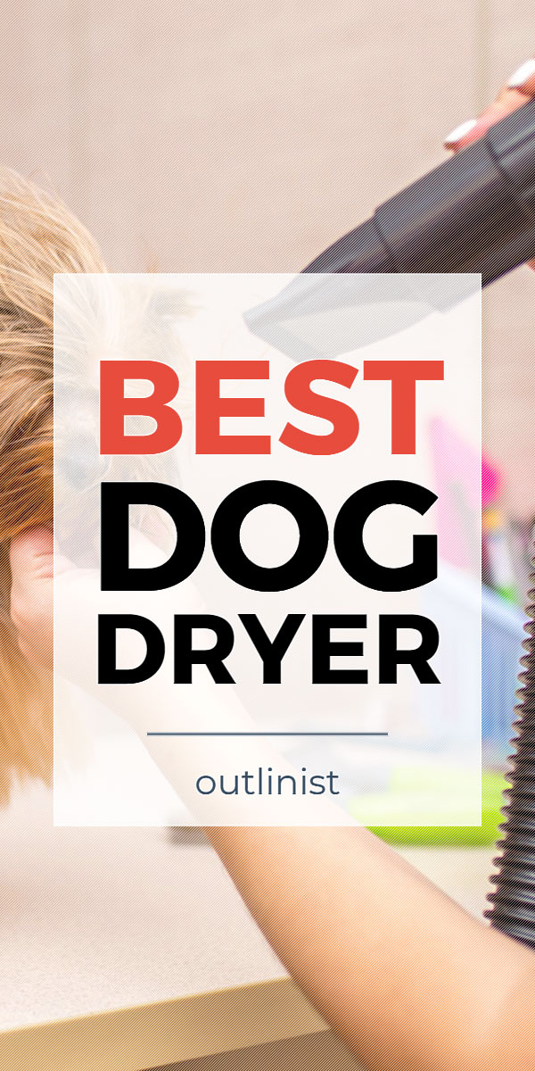 Best Dog Dryer • Reviews & Buying Guide