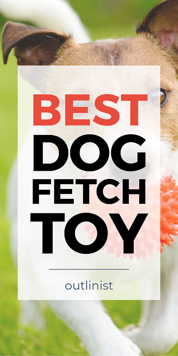 Best Dog Fetch Toy - Reviews & Buying Guide