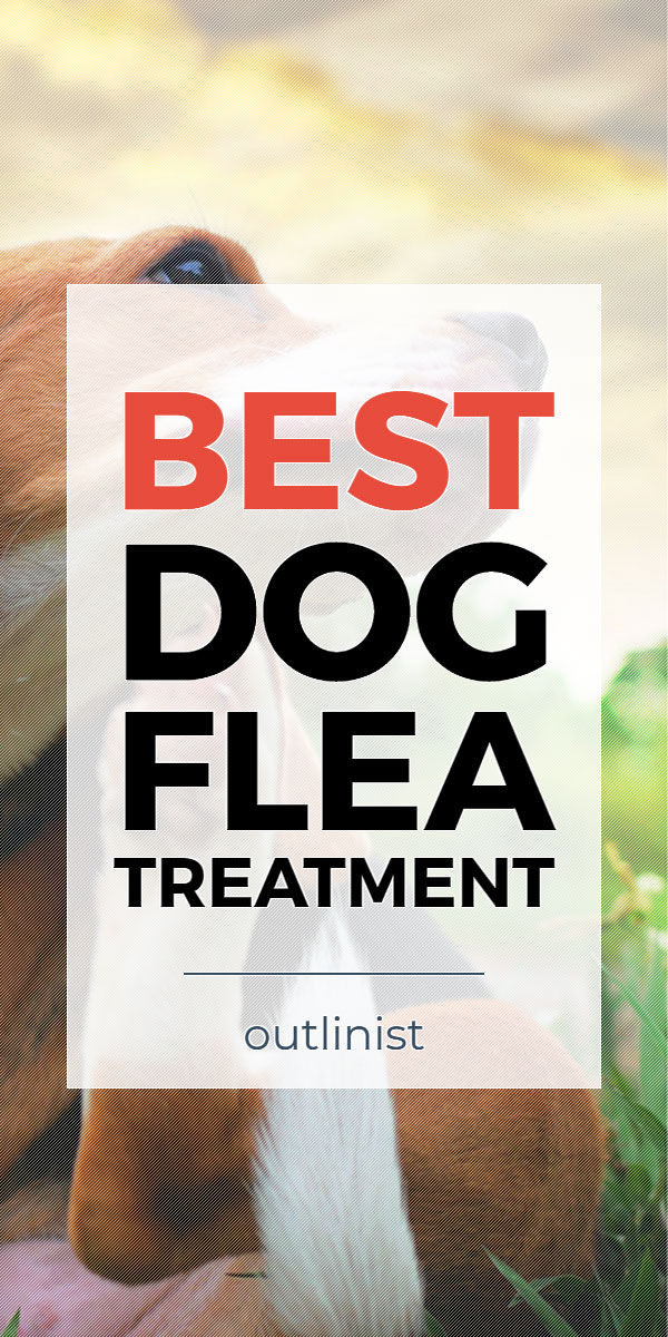 Best Dog Flea Treatment • Reviews & Buying Guide