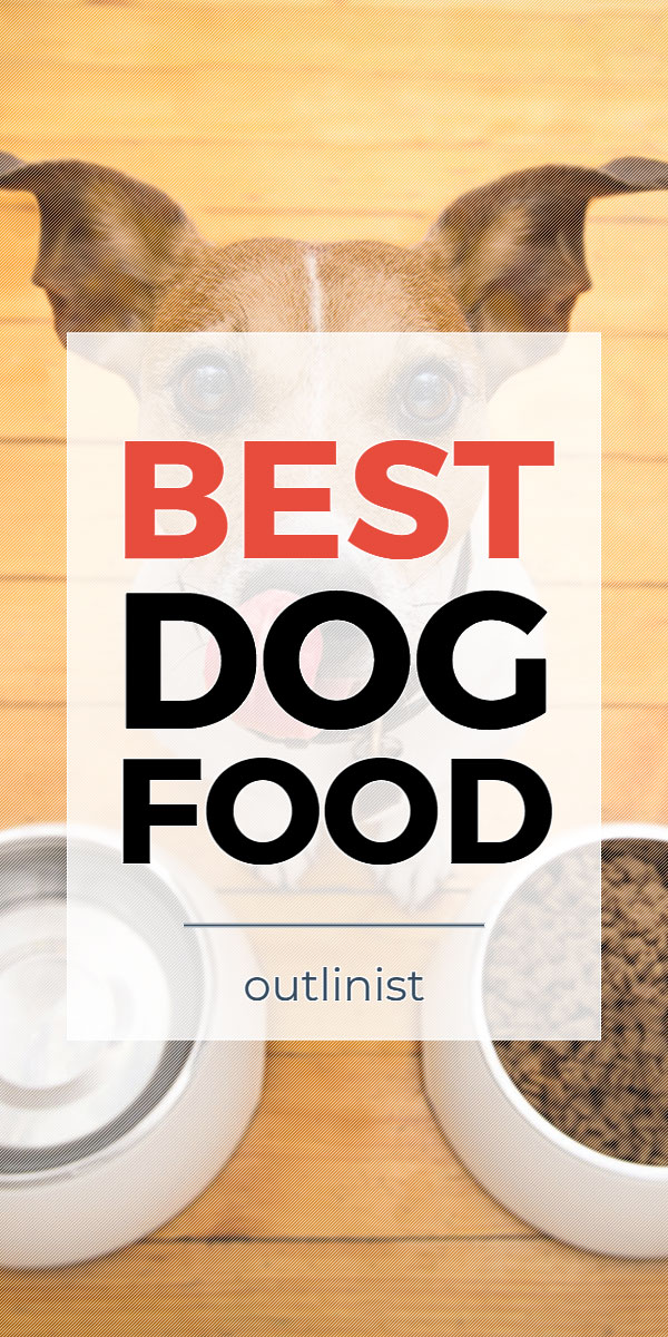 Best Dog Food • Reviews & Buying Guide