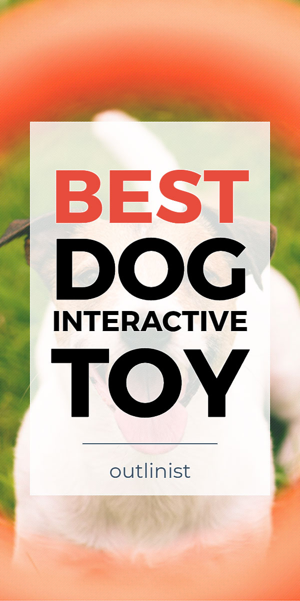 Best Dog Interactive Toy • Reviews & Buying Guide
