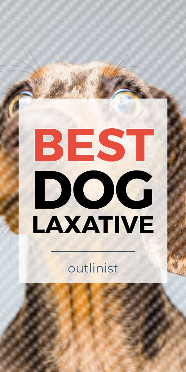 Best Dog Laxative • Reviews & Buying Guide