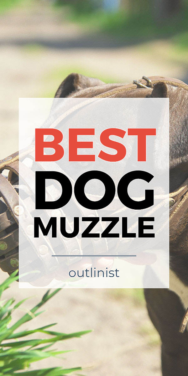 Best Dog Muzzle • Reviews & Buying Guide