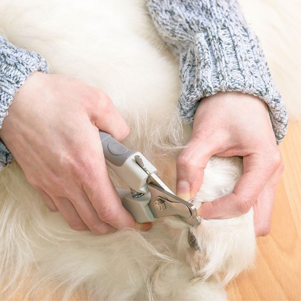 Best Dog Nail Clipper • Reviews & Buying Guide