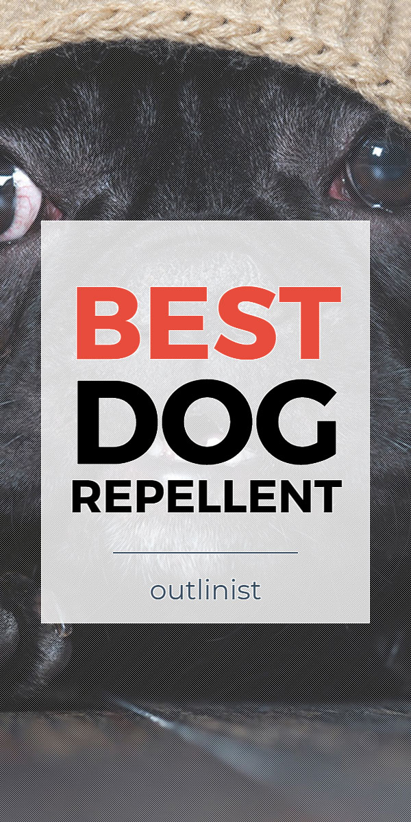 Best Dog Repellent - Reviews & Buying Guide
