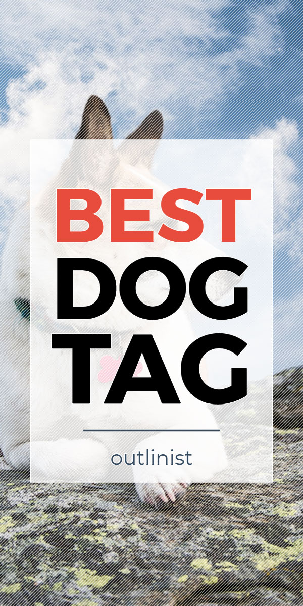 Best Dog Tag • Reviews & Buying Guide