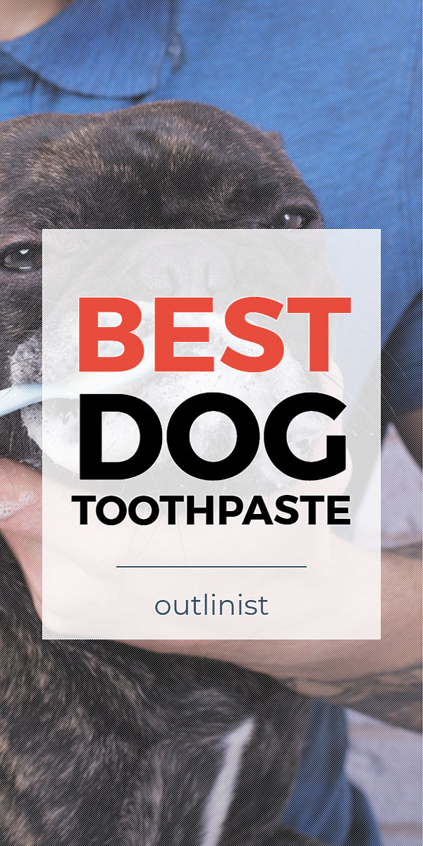 Best Dog Toothpaste • Reviews & Buying Guide