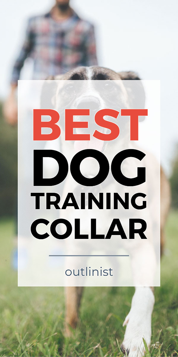Best Dog Training Collar • Reviews & Buying Guide