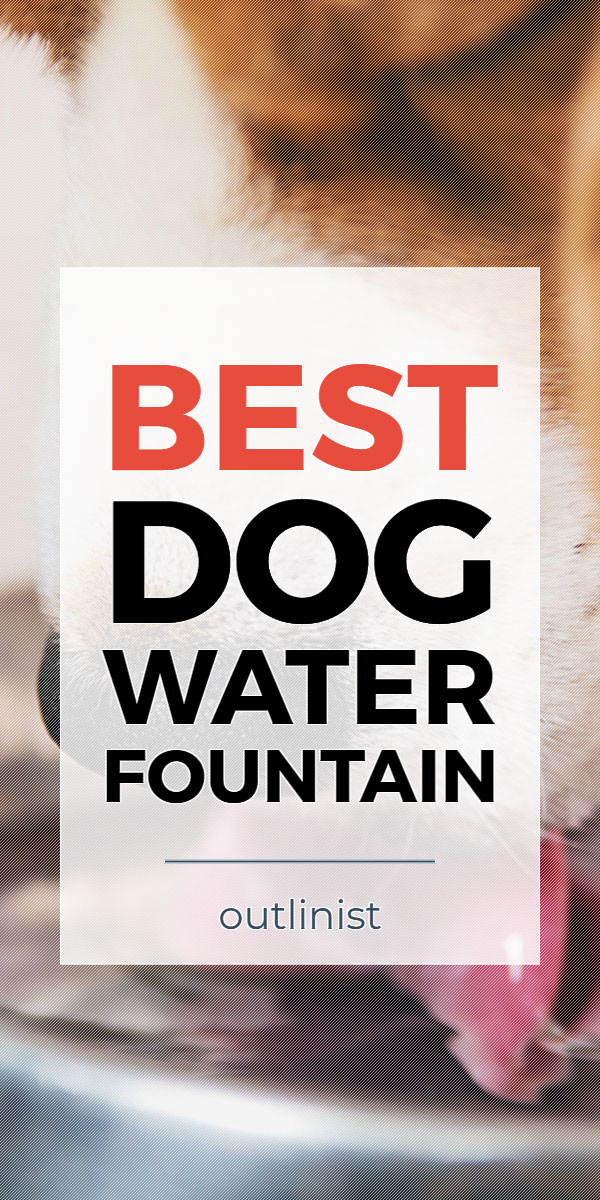 Best Dog Water Fountain - Reviews & Buying Guide