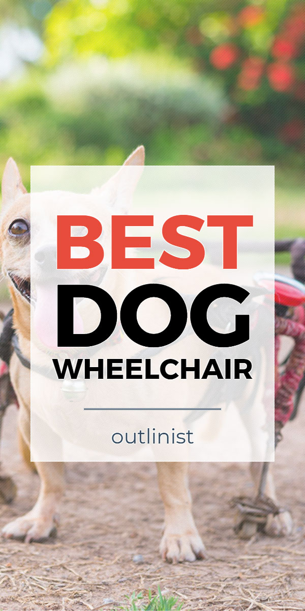 Best Dog Wheelchair - Reviews & Buying Guide