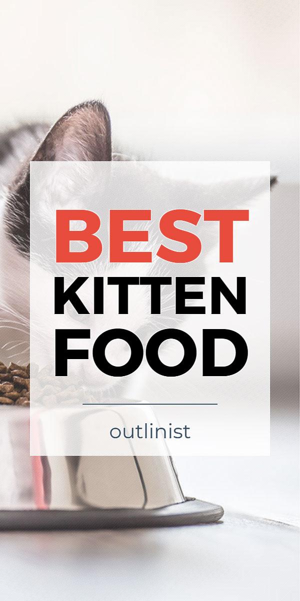 Best Kitten Food • Reviews & Buying Guide