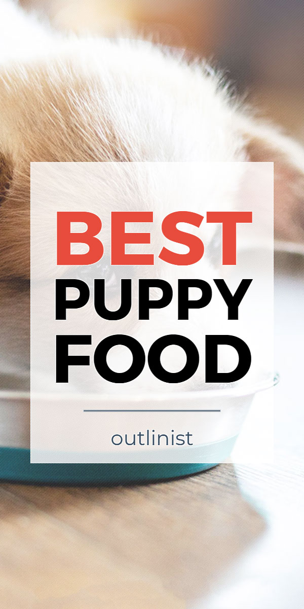 Best Puppy Food - Reviews & Buying Guide