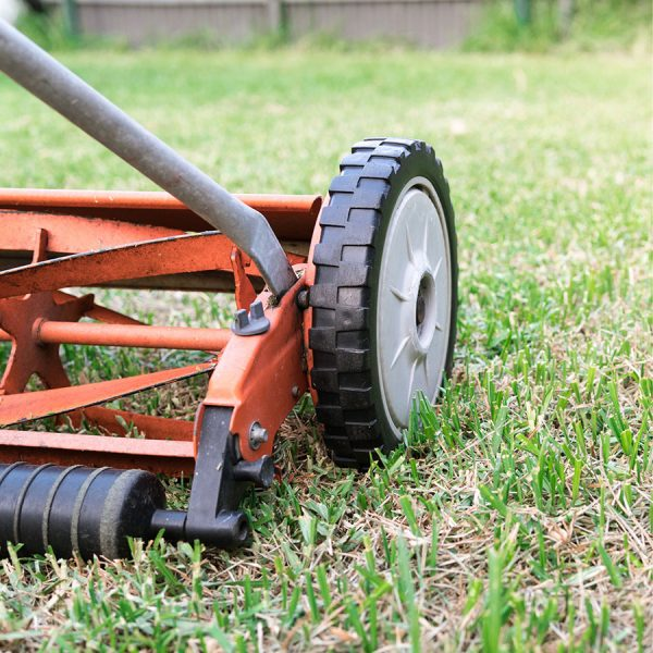 Best Reel Mower • Reviews & Buying Guide
