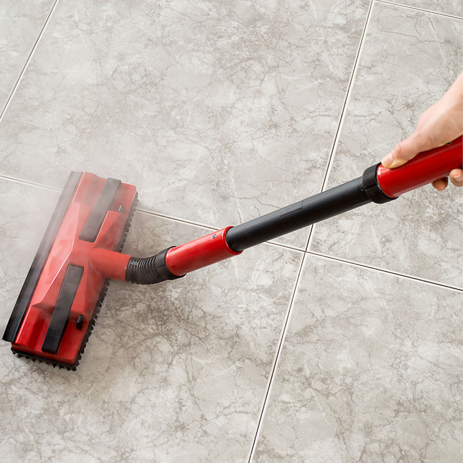 Best Steam Cleaner
