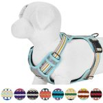 Blueberry Pet 3M Reflective Mesh Padded Dog Harness