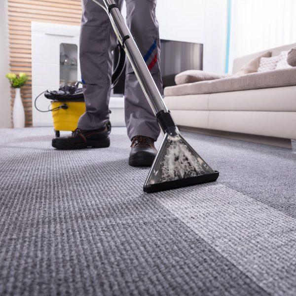 Carpet Cleaner vs Vacuum Cleaner: Different Job, Different Tool