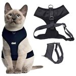 Dexil Luxury Water-Resistant Padded Cat Harness