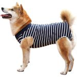 Dotoner XS-to-3XL Wound Protector Dog Recovery Suit