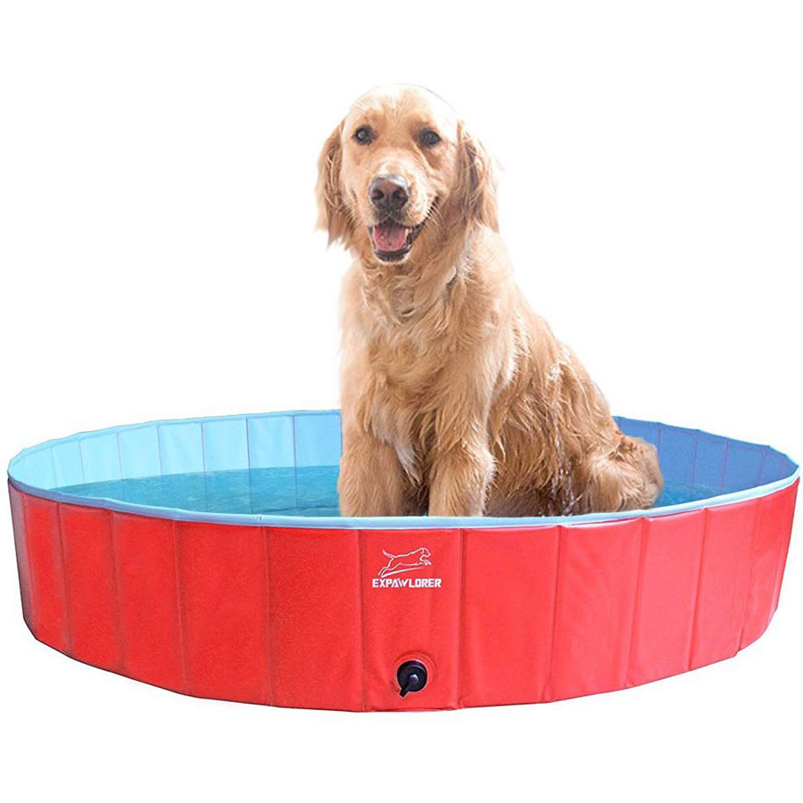 Expawlorer Foldable Dog Pool