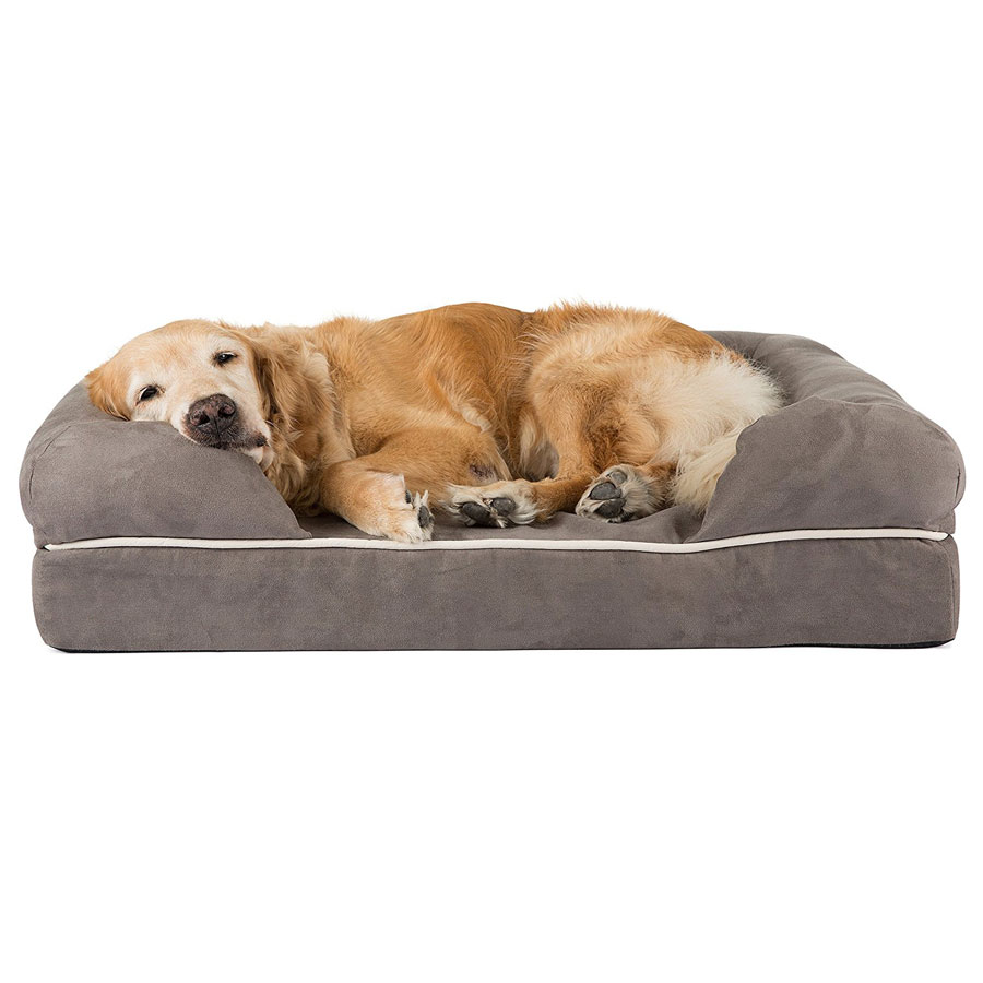 Friends Forever Premium Orthopedic Lounge Dog Bed