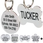 GoTags Stainless Steel Engraved Dog Tag