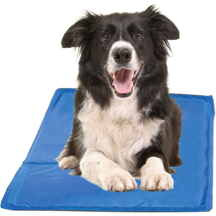 HPP Chillz Gel Dog Cooling Pad