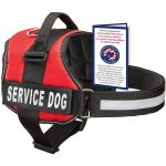 Industrial Puppy Harness Service Dog Vest