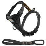 Kurgo Tru-Fit No-Pull Easy Walking Dog Harness