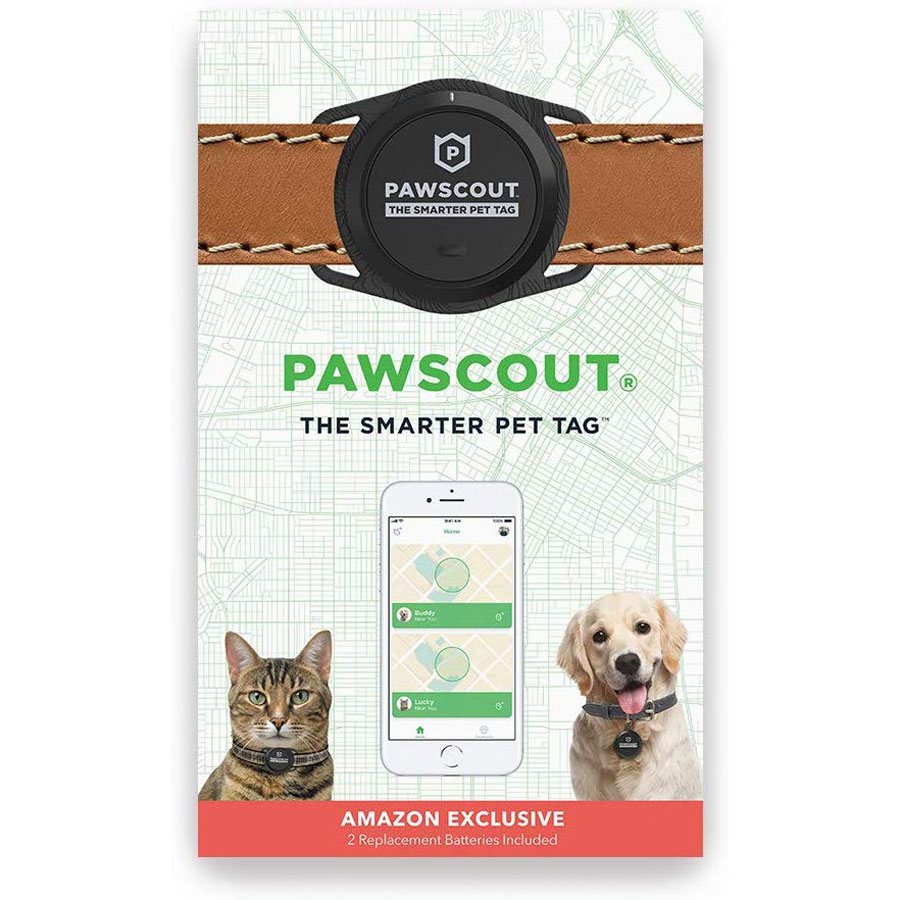 Pawscout Smarter Walk Tracker Dog Tag