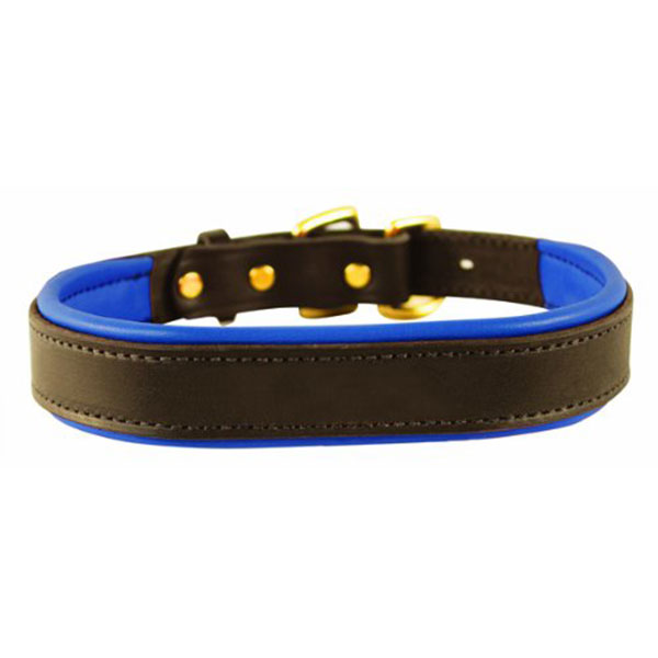 Perri's Padded Leather Basic Dog Collar