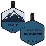 QALO Custom Silicone Unique Dog Tag