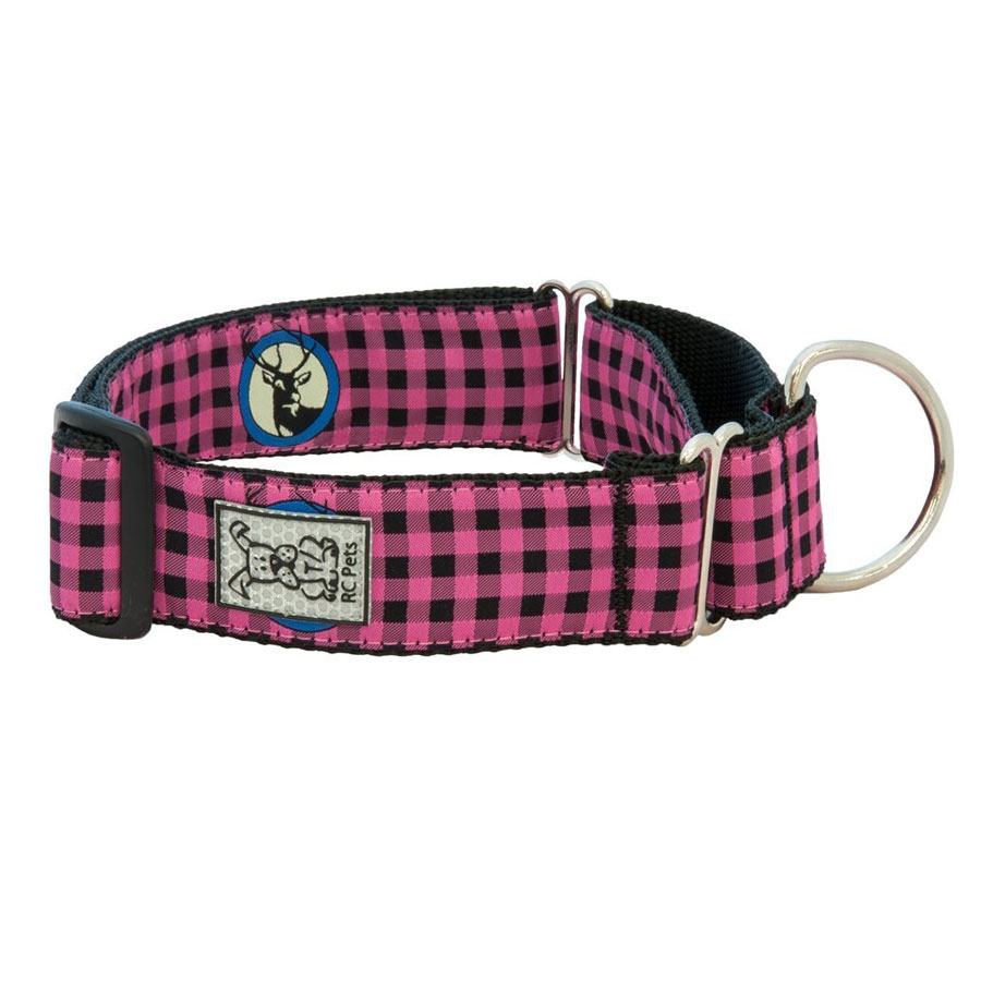 RC Pet Products All Webbing Martingale Dog Collar