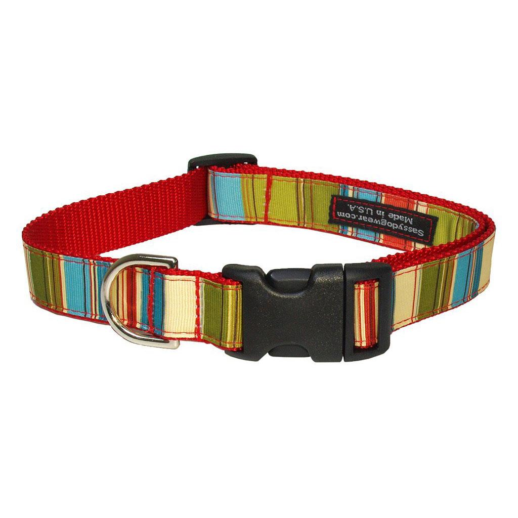 Sassy Dog Wear Adjustable Basic Dog Collar