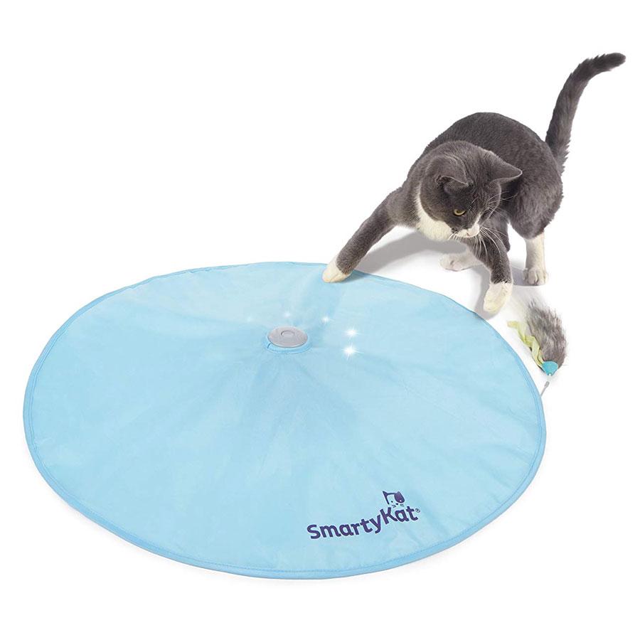 SmartyKat Hot Pursuit Motion Cat Toy