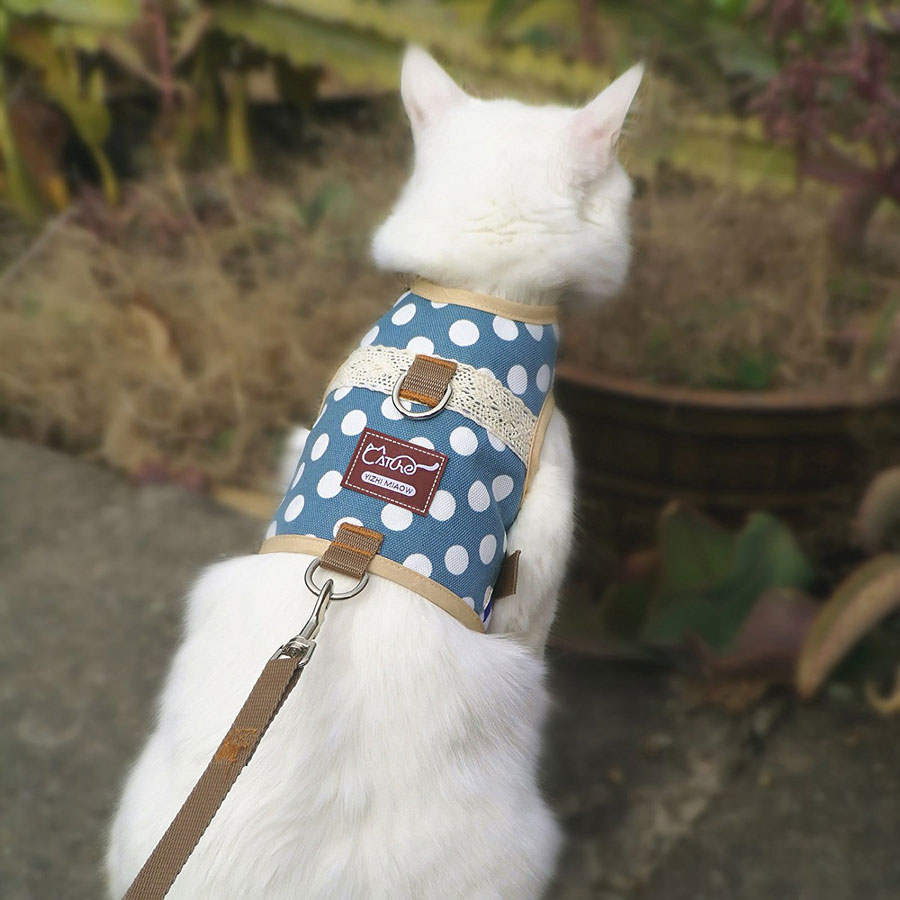Yizhi Miaow Adjustable Padded Cat Harness